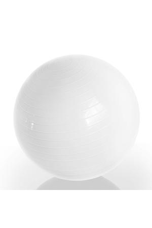 Emotion Body Ball - Met Trainingsvideo's - 65 cm