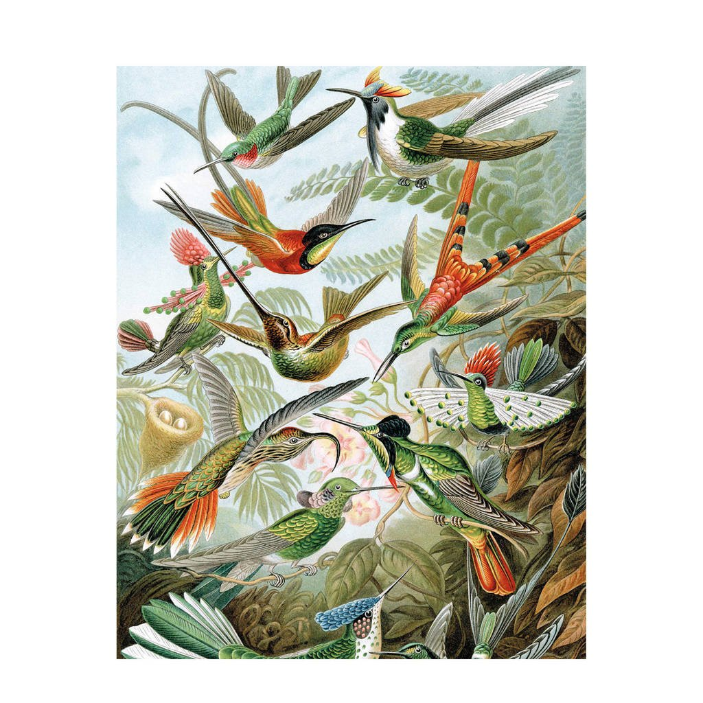 KEK Amsterdam behangpaneel Exotic Birds, Multi