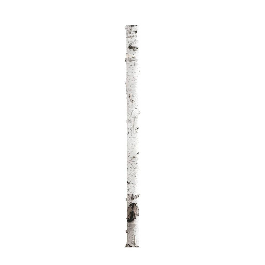 KEK Amsterdam muursticker boomstam (16x260 cm), Multi