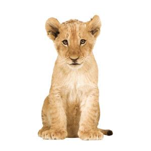 muursticker leeuw (28x48 cm)  ( cm)