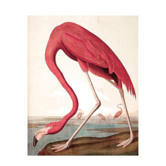 behangpaneel Flamingo (3 banen)