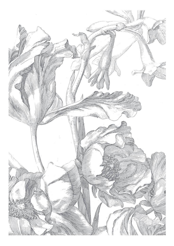 KEK Amsterdam behang Engraved Flowers I (4 banen), Wit/grijs