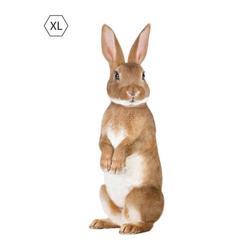 KEK Amsterdam muursticker konijn (43x118 cm) kopen