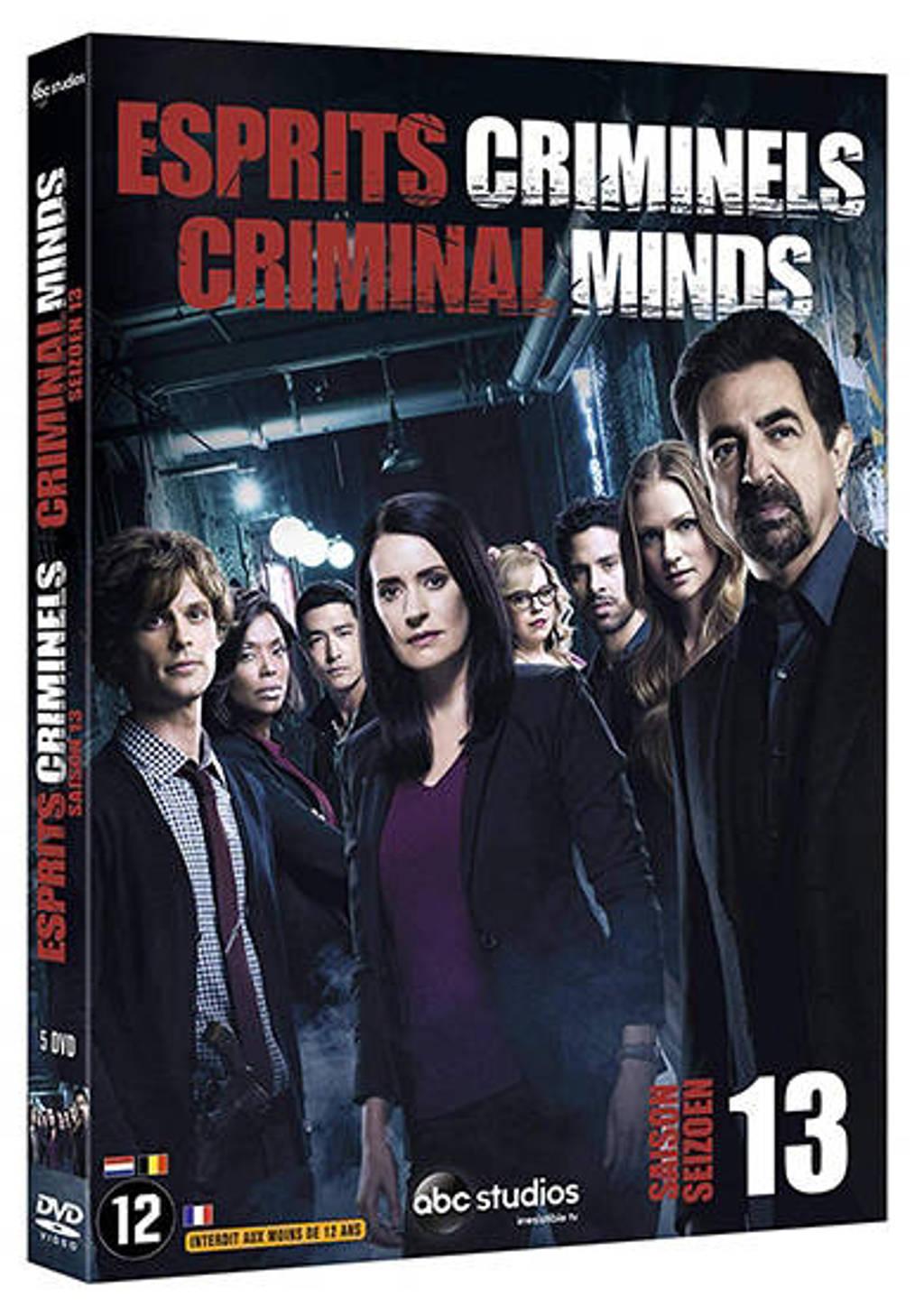 Criminal minds - Seizoen 13 (DVD)