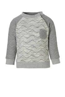C&A Baby Club sweater grijs melange (jongens)