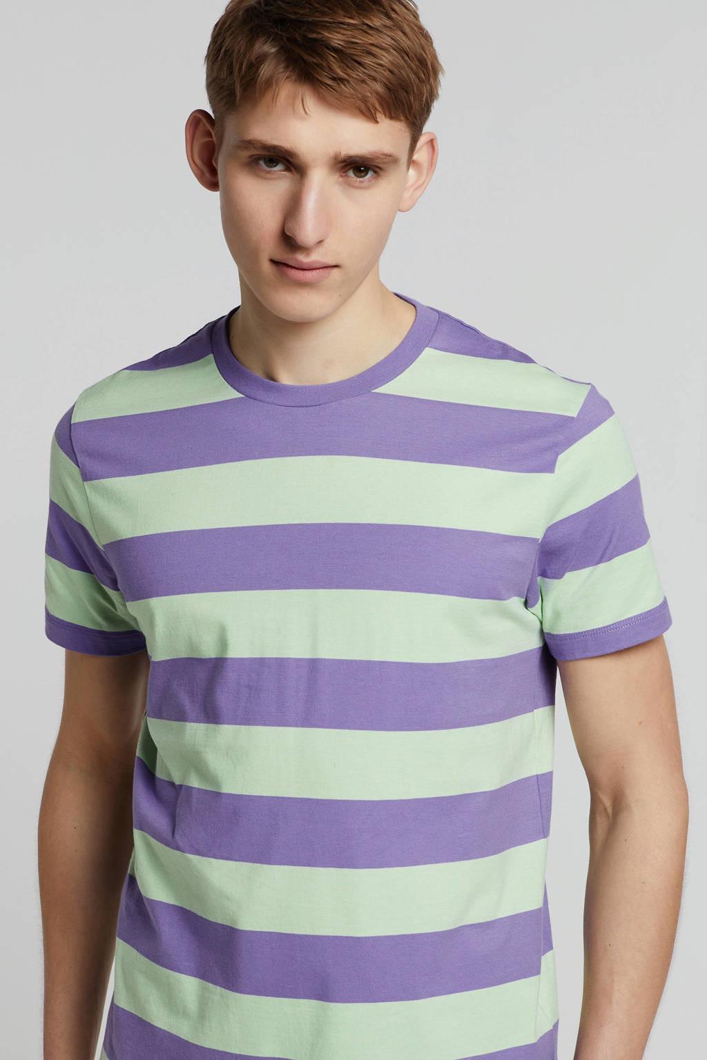 Scotch & Soda T-shirt met streepdessin, Paars/groen