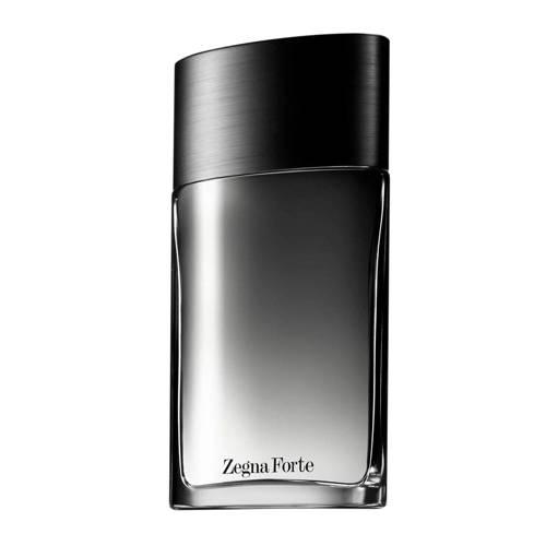 Ermenegildo Zegna Forte eau de toilette - 100 ml kopen
