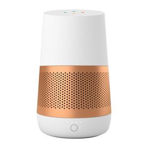 draagbare basis Google Home Loft