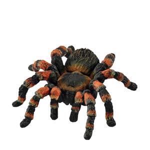 Wild Life tarantula spin