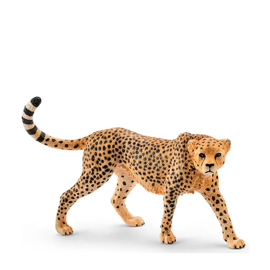 Schleich Wild Life luipaard wijfje