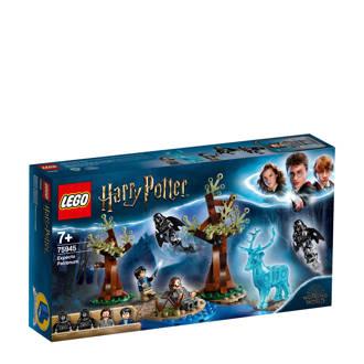 Harry Potter Expecto Patronum 75945