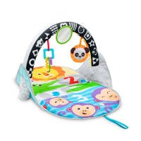 Fisher-Price 2-in-1 activity gym