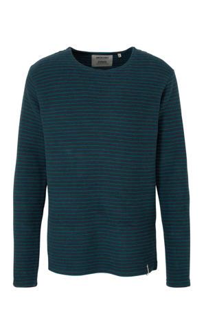 gestreepte katoen sweater blauw/groen