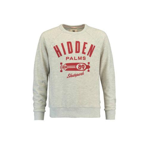 America Today Junior sweater Leo met print grijs melange kopen