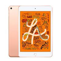 Apple iPad mini Wi-Fi 64GB ( MUQY2NF/A) Goud