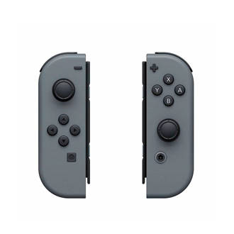 Switch Joy-Con controllers grijs