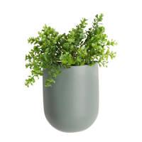 pt, wand plantenpot Oval, Groen