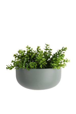 wand plantenpot Oval