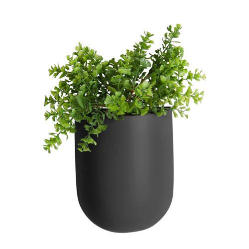 pt, wand plantenpot Oval kopen