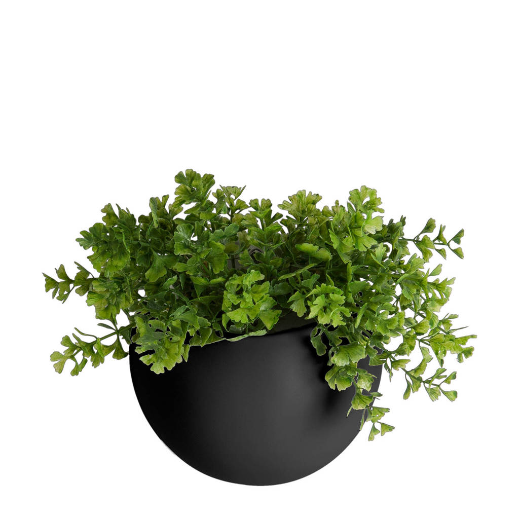 pt, wand plantenpot Globe, Zwart
