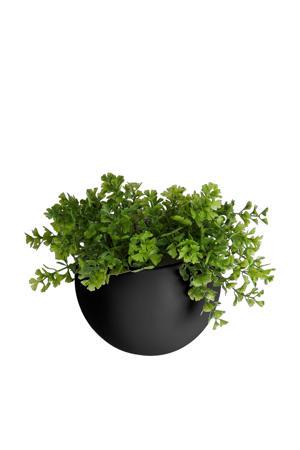 wand plantenpot Globe