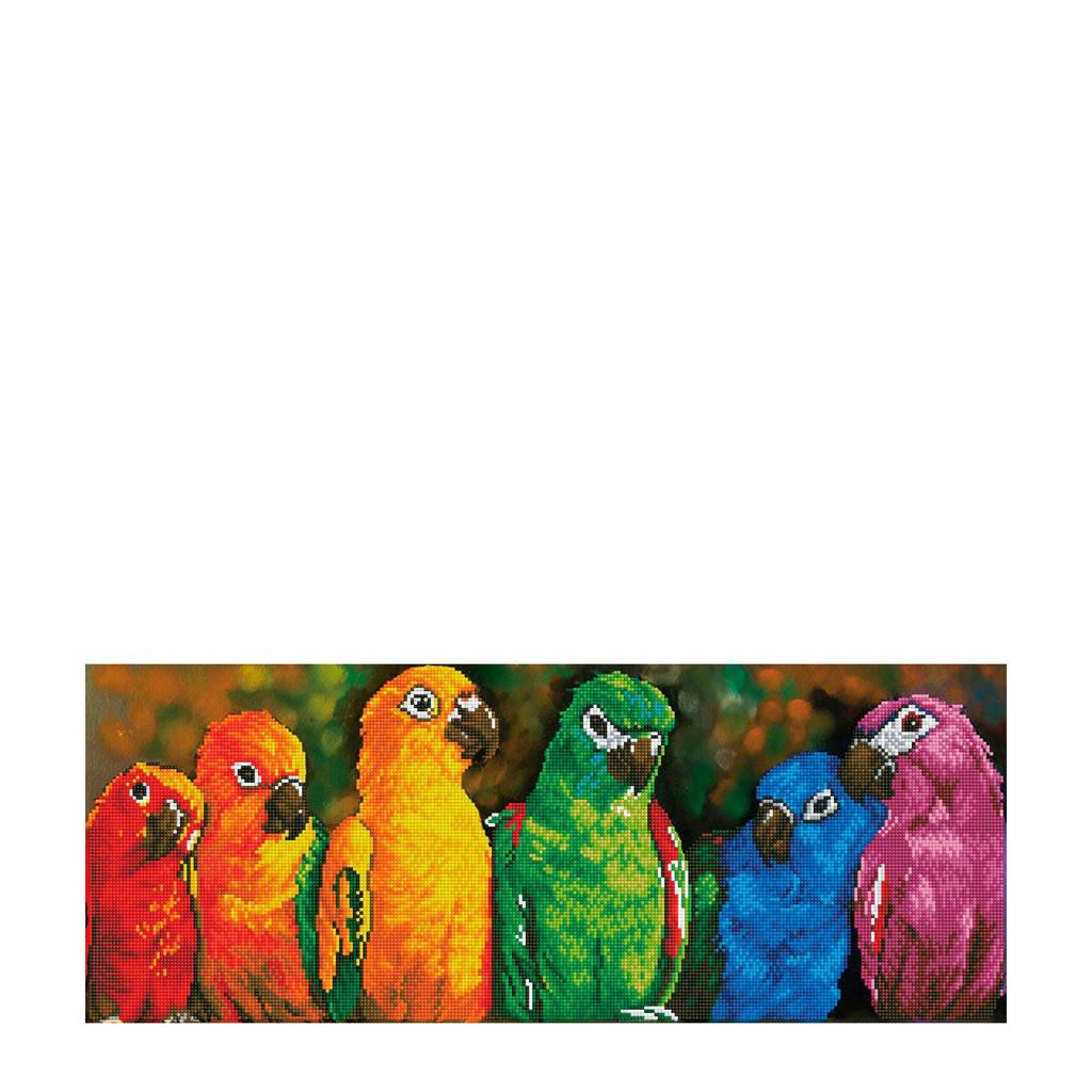 Diamond Dotz rainbow parrots diamond dotz: 77x30 cm