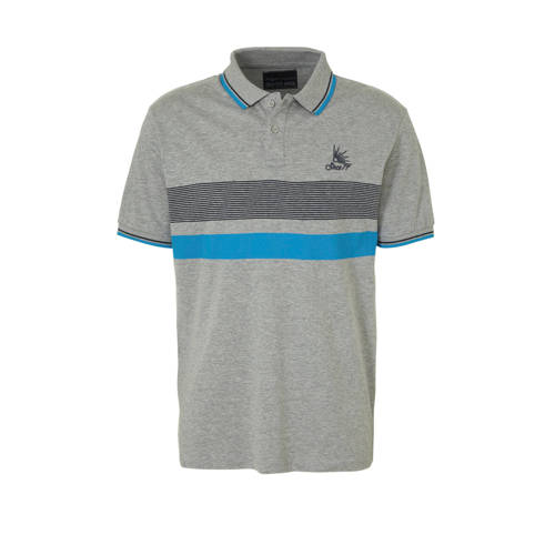 C&A Angelo Litrico polo met strepen