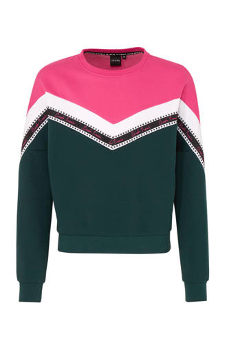 sweater Wendy met all over print donkergroen/roze