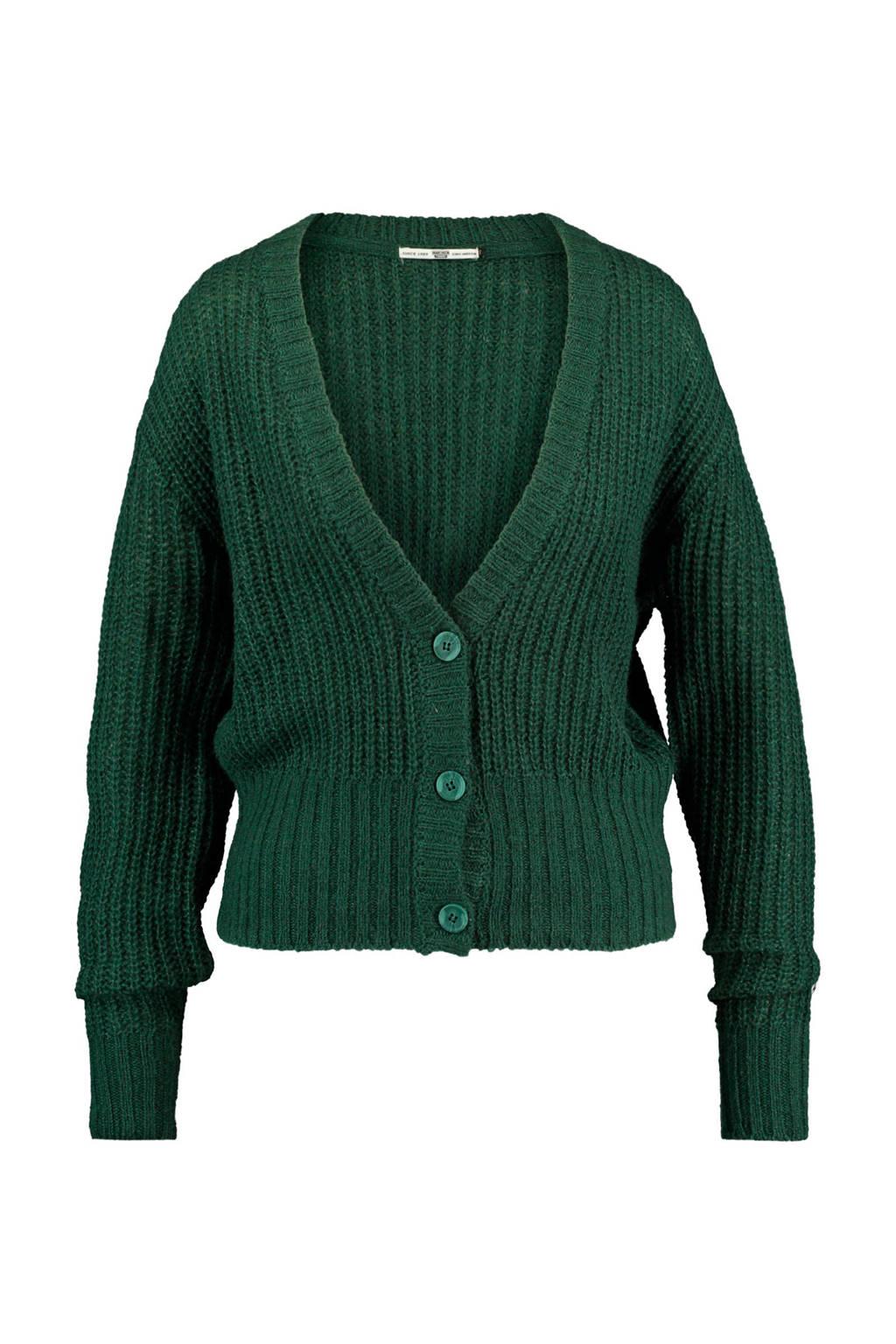 America Today gebreid vest met wol groen, Groen