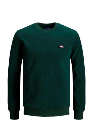 JUNIOR sweater met borduursels donkergroen