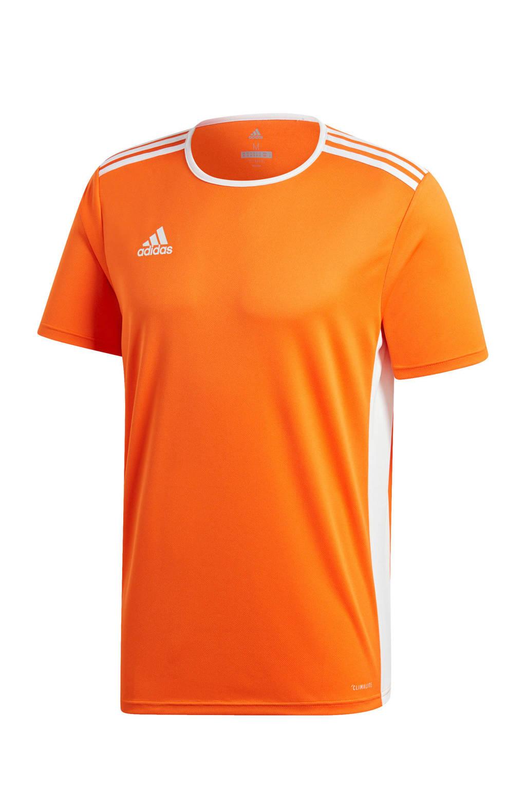adidas   sport T-shirt Entrada oranje, Oranje/wit