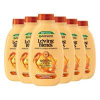 Garnier Loving Blends Honing Goud shampoo - 6x 300ml multiverpakking