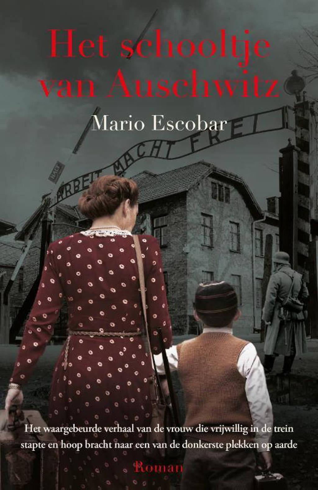 Het schooltje van Auschwitz - Mario Escobar