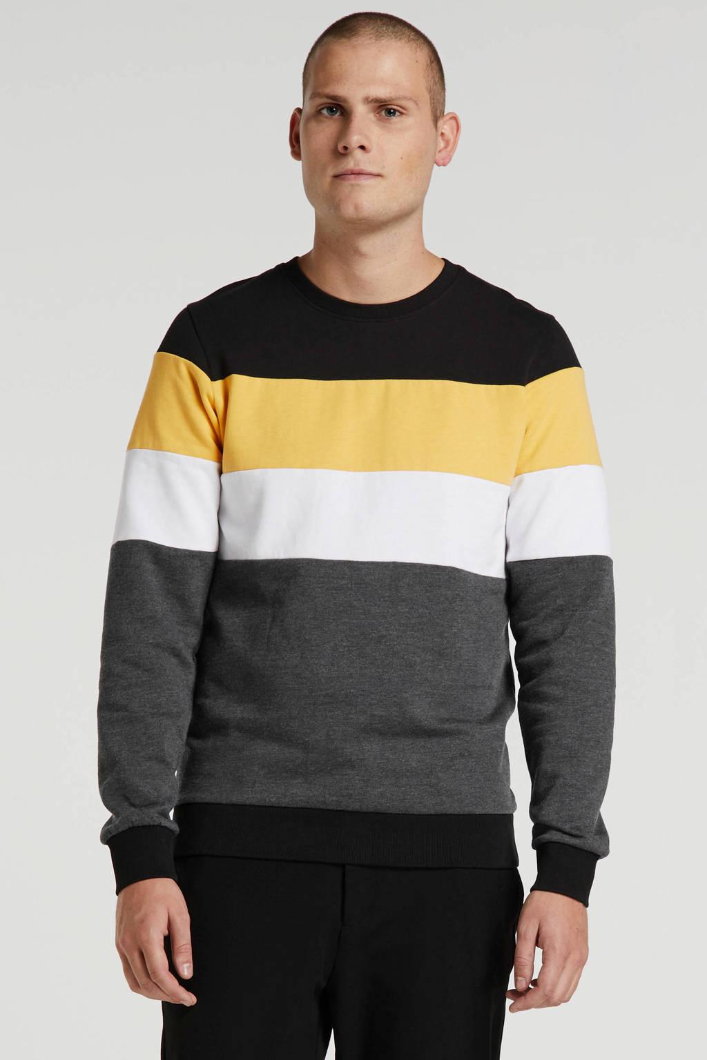 Redefined Rebel gestreepte sweater zwart/geel/wit/grijs