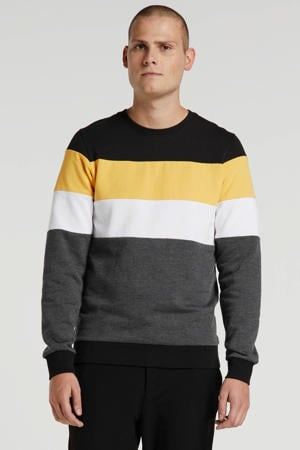 gestreepte sweater zwart/geel/wit/grijs