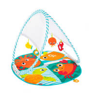 Fisher-Price draagbare en opvouwbare babygym