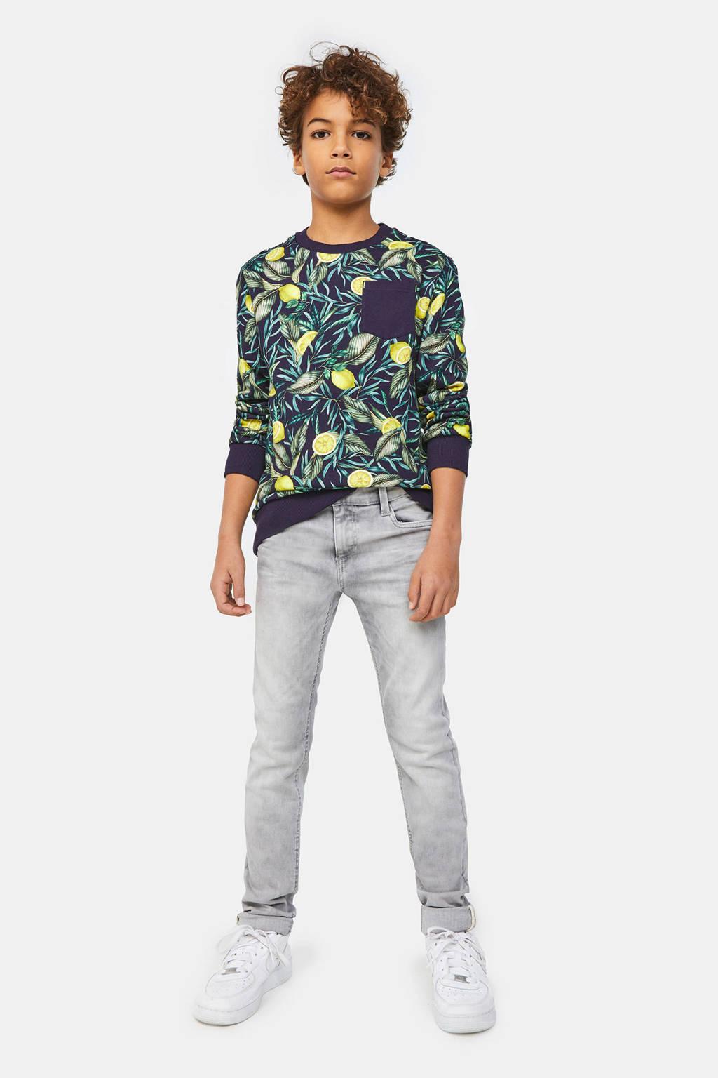 WE Fashion Blue Ridge skinny fit jeans grijs, Grijs