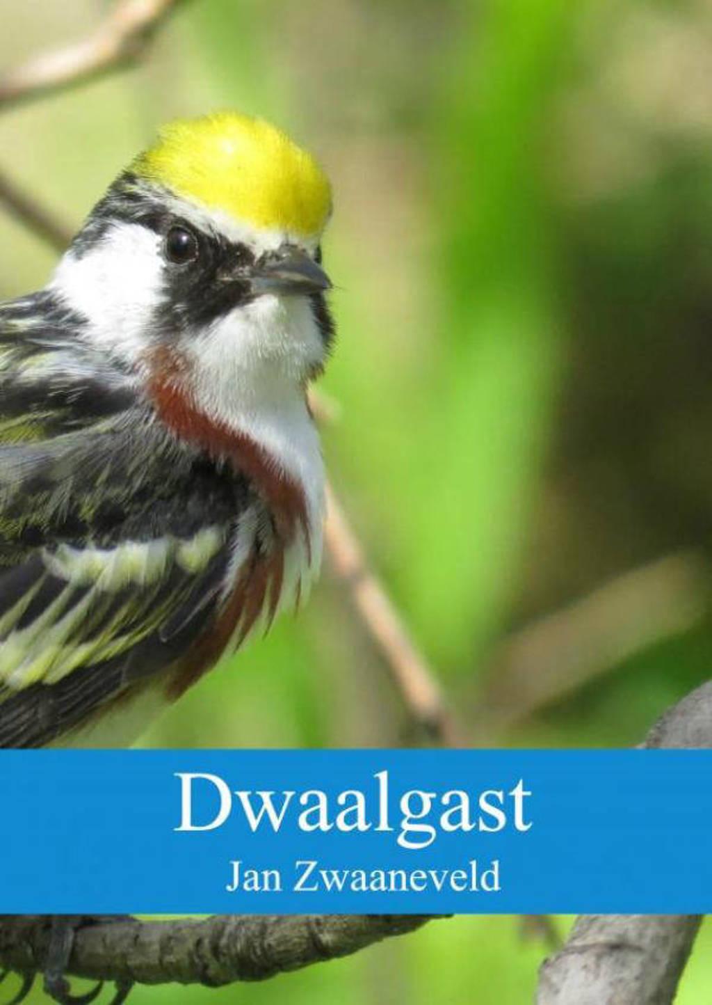 Dwaalgast - Jan Zwaaneveld