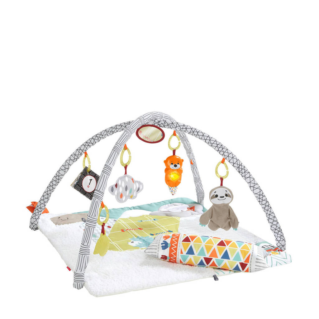 Fisher-Price deluxe babygym