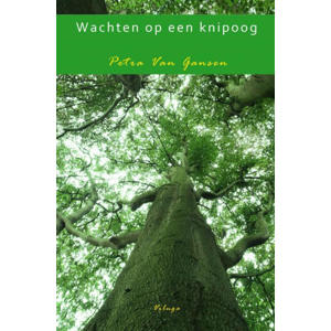 Wachten op een knipoog - Petra Van Gansen