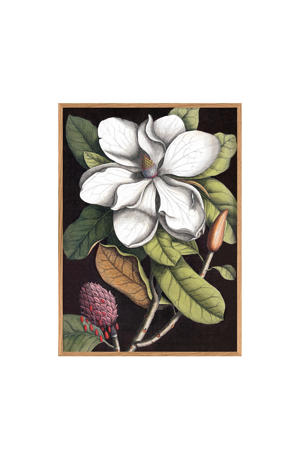 poster Blooming White Magnolia (30x40 cm)