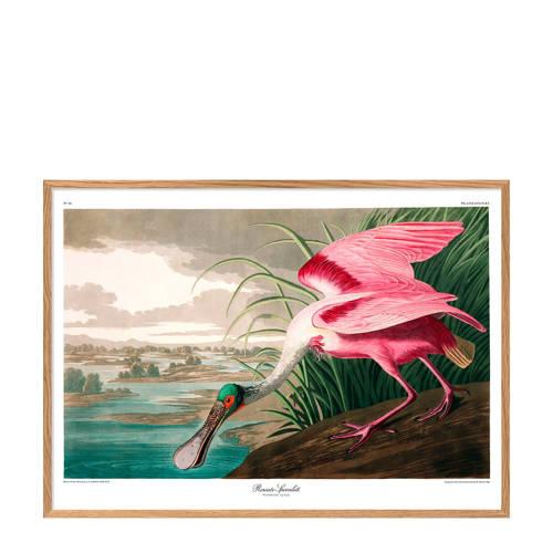 The Dybdahl Co wanddecoratie Roseate Spoonbill (50x70 cm)