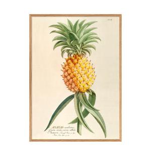 wanddecoratie Ananas  (50x70 cm)