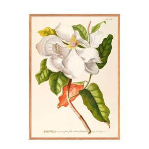 wanddecoratie Magnolia (50x70 cm)
