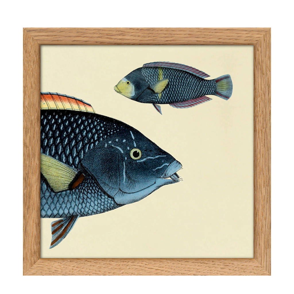 The Dybdahl Co wanddecoratie Mini Half Fish (15x15 cm), Multicolor