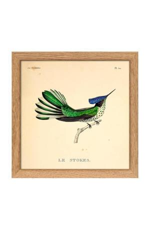poster Mini Hummingbirds (15x15 cm)