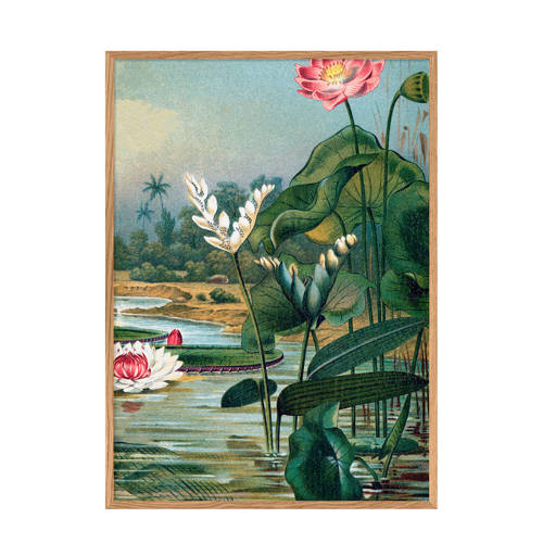 The Dybdahl Co wanddecoratie Water Plants (70x100