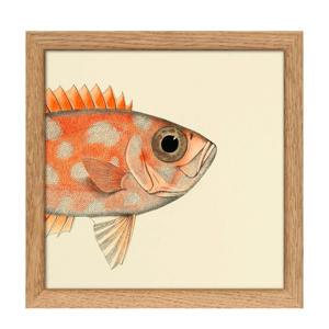 wanddecoratie Mini Half Fish (15x15 cm)