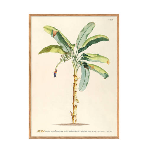 The Dybdahl Co wanddecoratie Musa (30x40 cm)