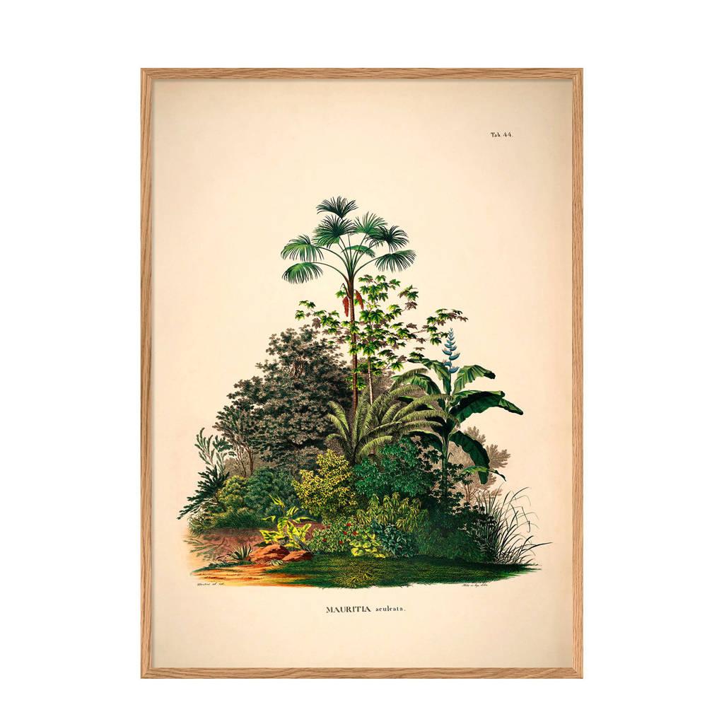 The Dybdahl Co wanddecoratie Mauritia Aculeata (30x40 cm)
